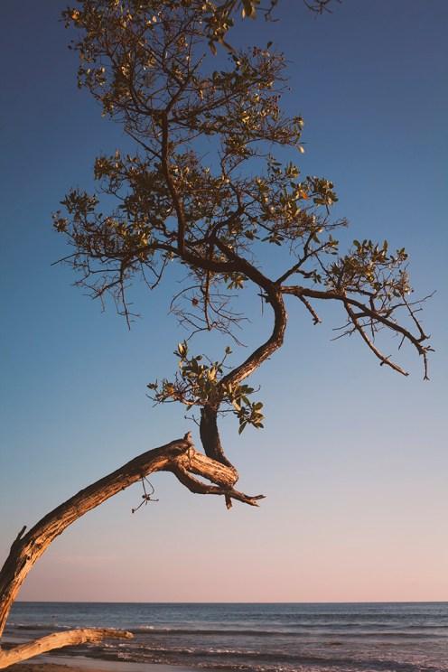 Couleurs d'un coucher de soleil sur la Playa Negra