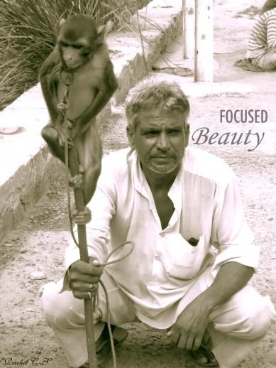 """""""Monkey on a Stick"""" taken by Rachel Cancino-Neill in India: 2010"""