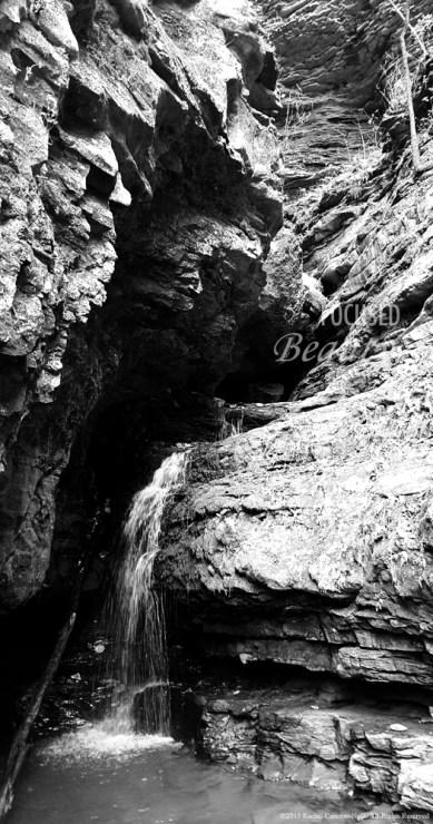 """""""Buffalo Fall"""" by Rachel Cancino-Neill taken on Buffalo River Trail, AR: 2015"""
