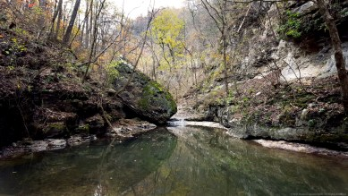 """""""Two-Sided"""" by Rachel Cancino-Neill taken on Buffalo River Trail, Arkansas: 2015"""