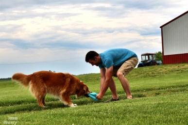 Tug of war with the dog