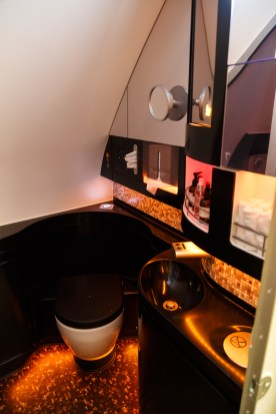 Etihad First Class Apartment Shower
