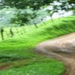 cropped-cropped-cropped-los-campesinos-road-for-blog-940