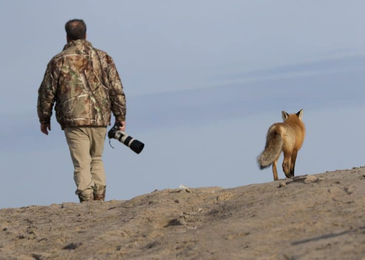 Confessions of a Wildlife Photographer