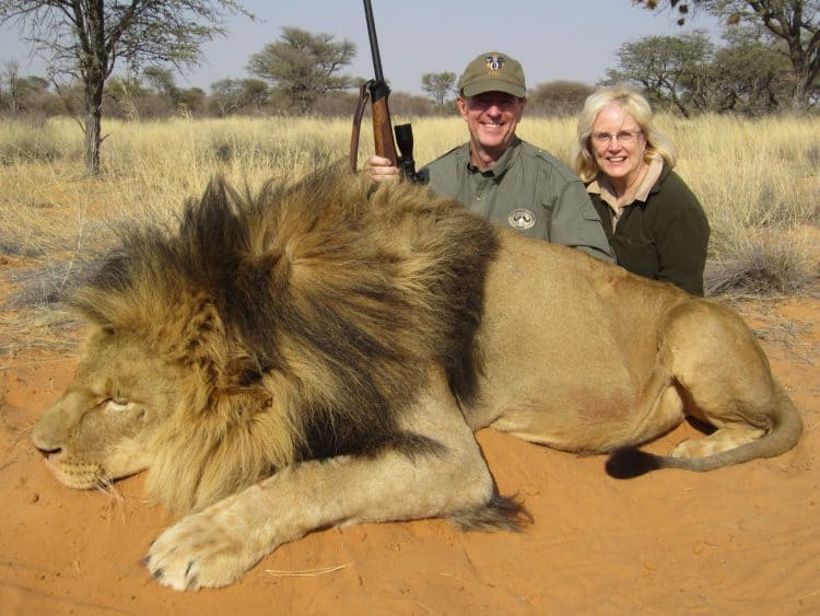 POLL: Should trophy hunting of lions be made illegal?
