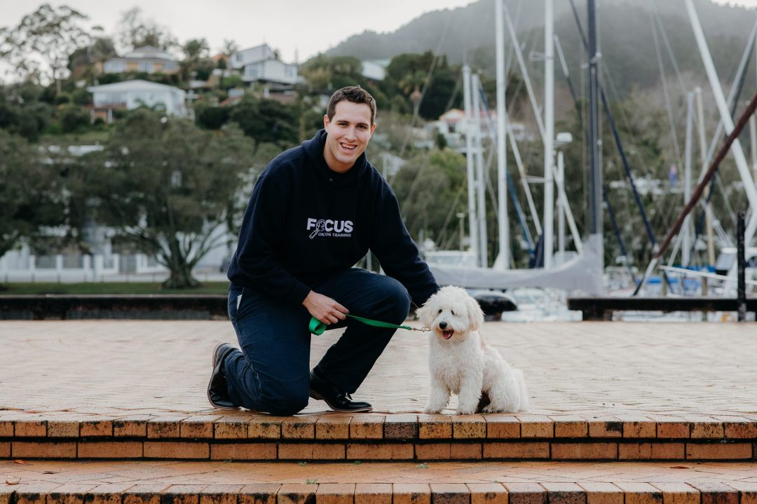 Geelong dog trainer with large dog