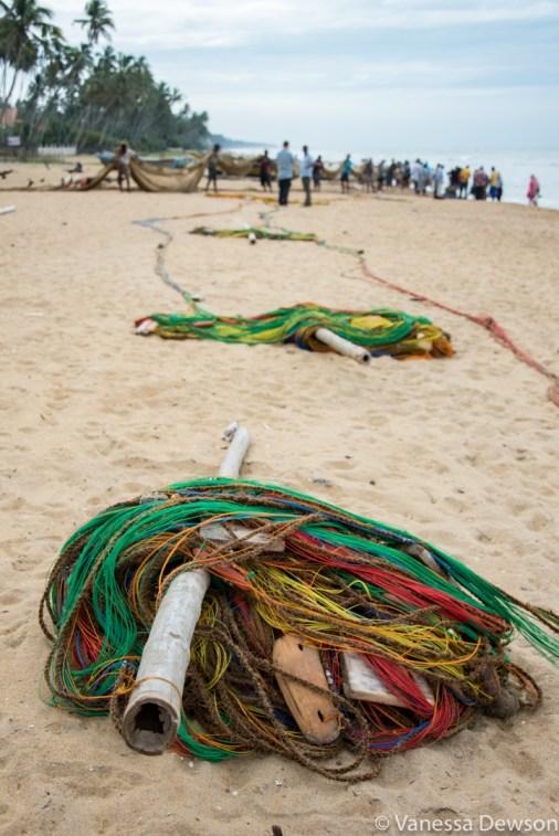 After breakfast, the nets were in. Wadduwa Beach, Sri Lanka