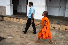 Young monk, Dambulla, Sri Lanka