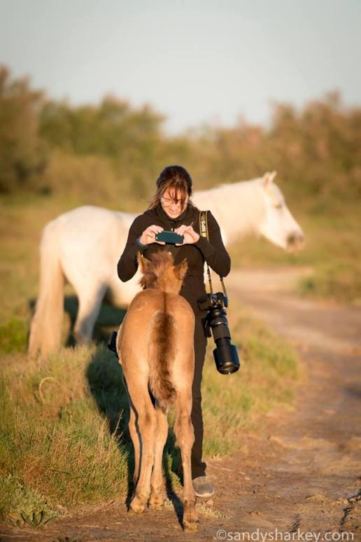Vanessa, realizing her iPhone is a better choice to capture this curious foal. Photo by: Sandy Sharkey