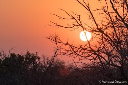Sunset at Kapama
