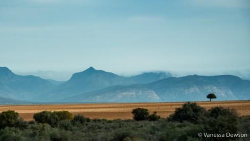 Beautiful landscape on the drive to Knysna