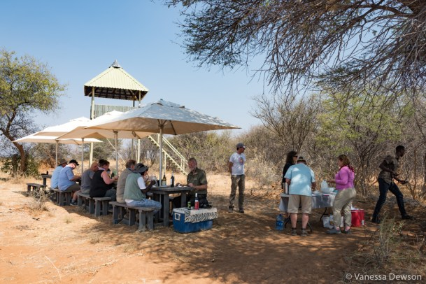 Lunch in the bush.