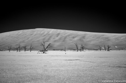 Deadvlei infrared