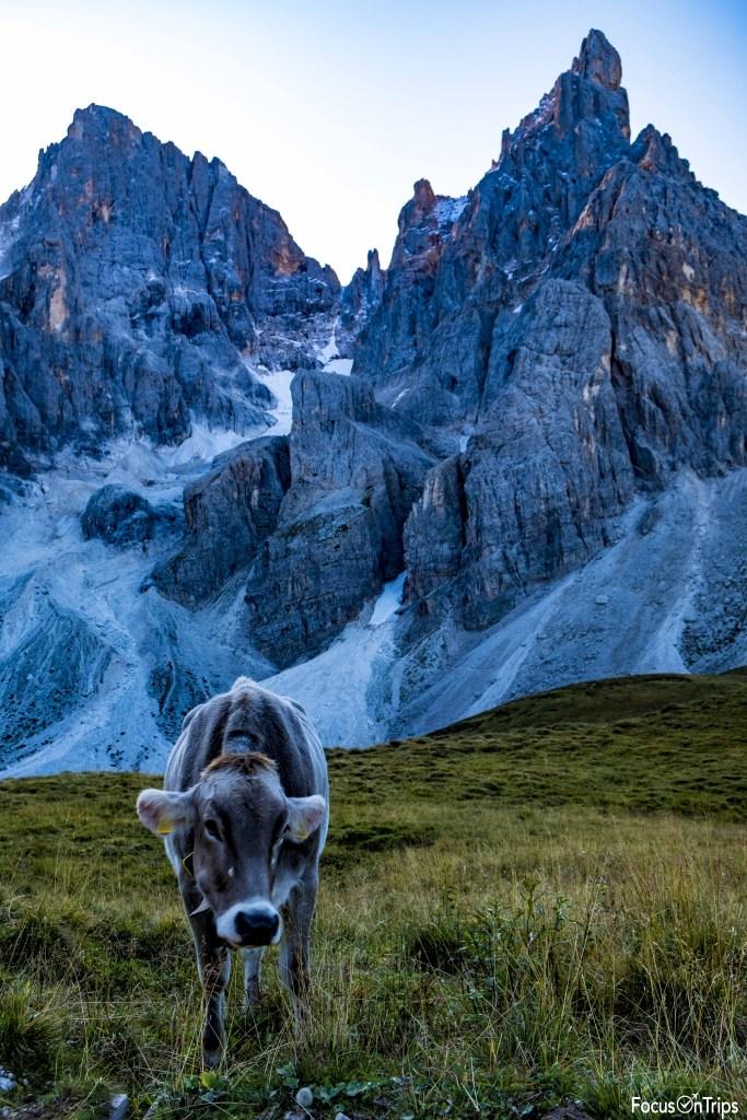 trekking rifugio Mulaz pale di San Martino-Baita Segantini-Cimon della Pala