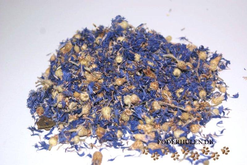 Tørrede blå kornblomster - Foderhulen.dk
