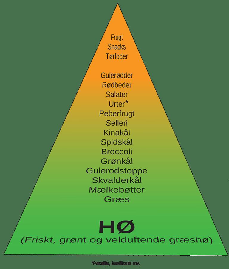 Balanceret fodring for marsvin og kaniner   Foderhulen.dk