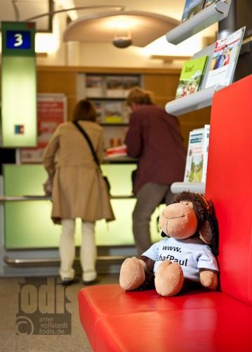 Schaf Paul im DB-Reisezentrum