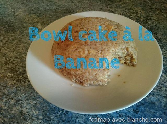 Bowl Cake à la banane pauvre en FODMAP, sans lactose, sans gluten