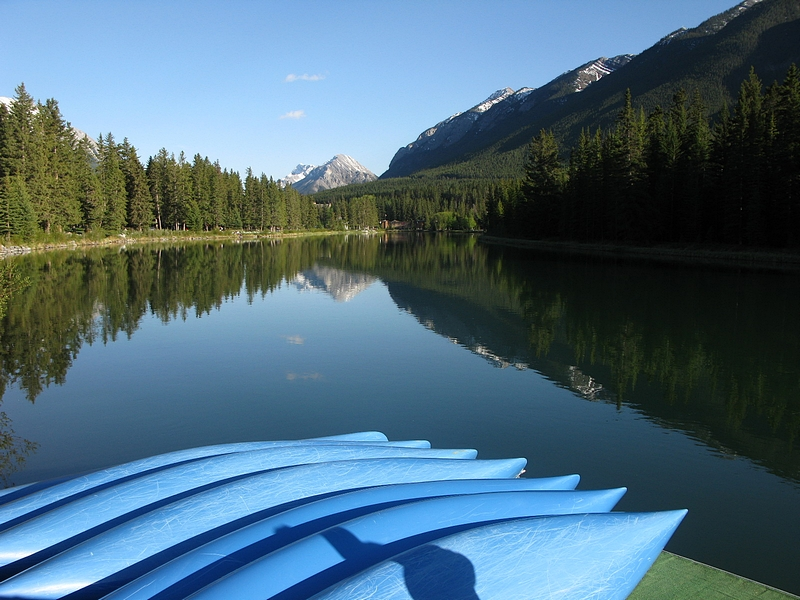 A perfect summers reflection - bow river in Banff