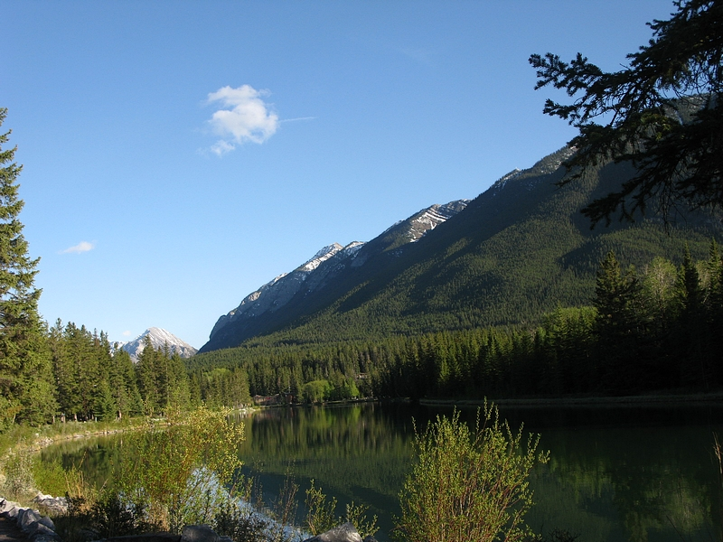 Summer reflections & the Bow River - Banff