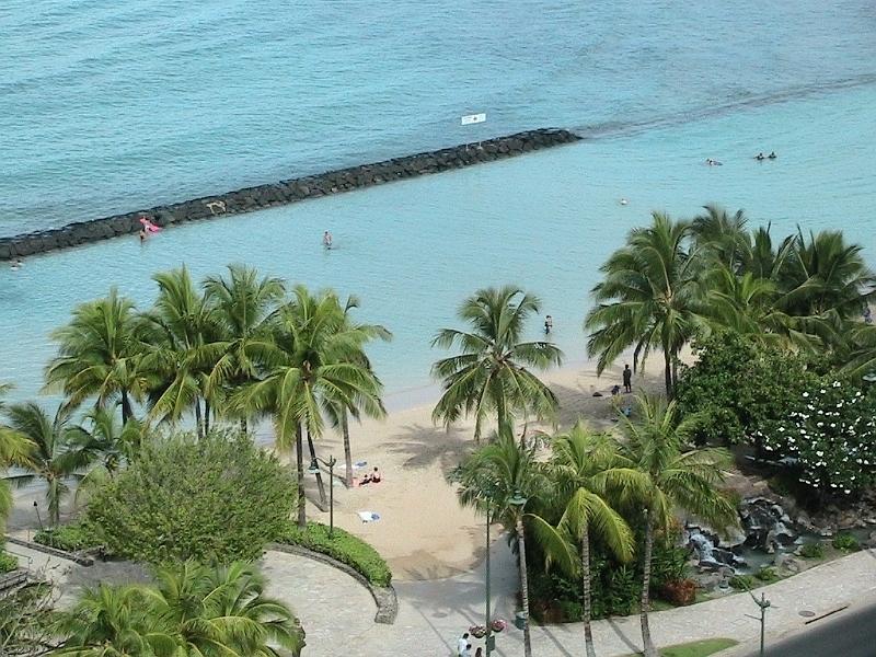 Looking down at Palm Trees and Blue Ocean at Waikiki Beach