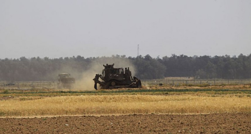 Agriculture in Gaza: Impacts of COVID-19 on a sector already suffering from Israeli Occupation
