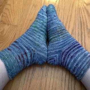 fish-socks