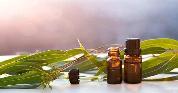 Eucalyptus oil