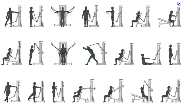 cable exercises