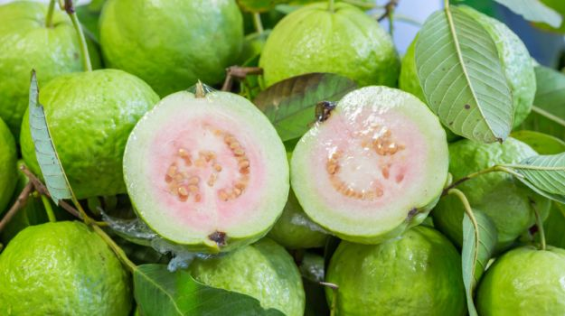 guava for loose motions