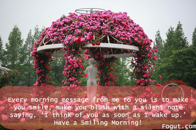 every morning message from me to you is to make you smile