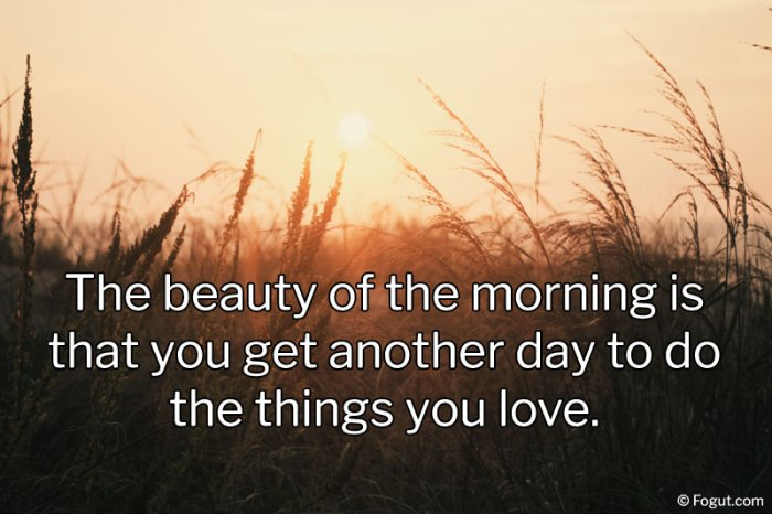 the beauty of the morning is that you get another day