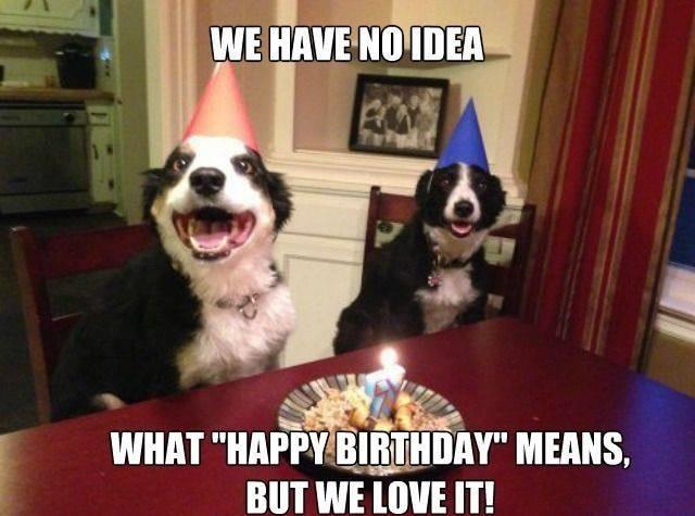 no idea happy birthday meme