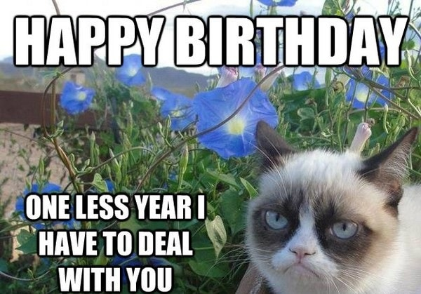 one less year funny birthday meme