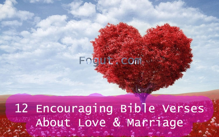 Bible Verses About Love U0026 Marriage