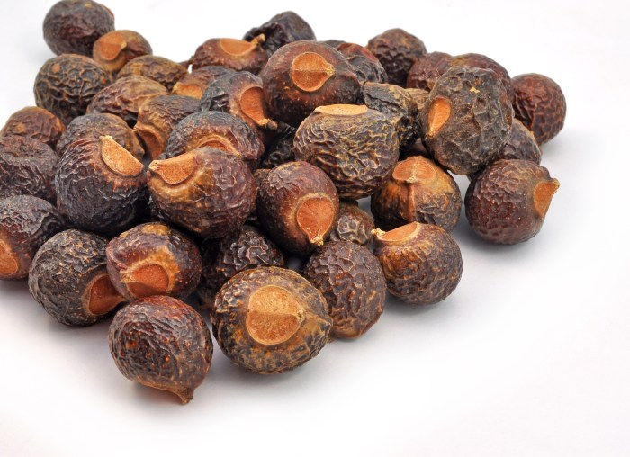 Reetha (Soapnuts)