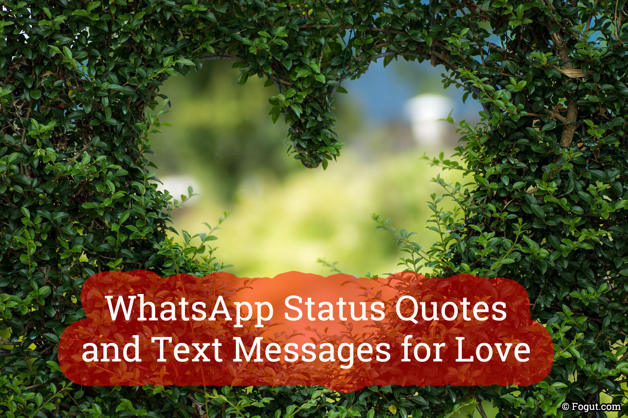 whatsapp status quotes and text messages for love