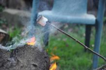 Roasting a marshmallow.