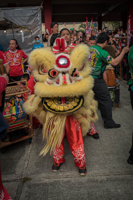 fokopoint-9999 Chinese New Years Celebration 2019
