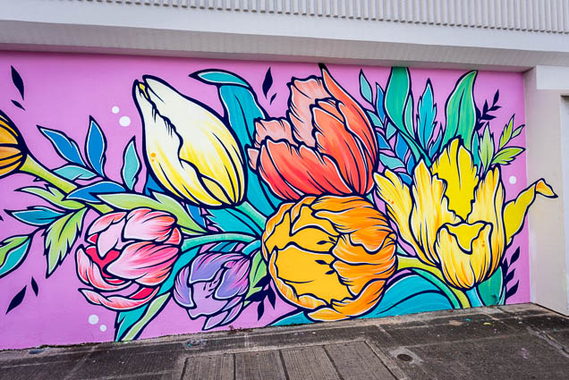 kakaako-street-art-honolulu-fokopoint-1084 Kaka'ako Street Art March 2019