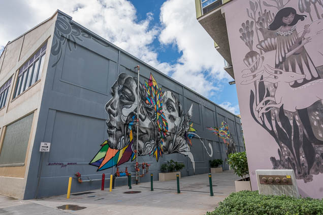kakaako-street-art-honolulu-fokopoint-1184 Kaka'ako Street Art March 2019