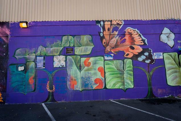 kakaako-street-art-honolulu-fokopoint-1228 Kaka'ako Street Art March 2019