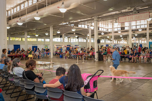 hawaii-pet-expo-2019-honolulu-blaisdell-fokopoint-2995 Hawaii Pet Expo 2019