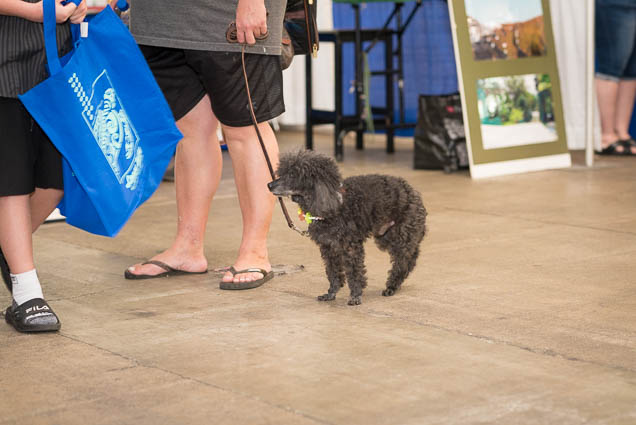 hawaii-pet-expo-2019-honolulu-blaisdell-fokopoint-3053 Hawaii Pet Expo 2019