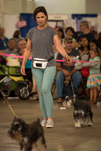hawaii-pet-expo-2019-honolulu-blaisdell-fokopoint-3218 Hawaii Pet Expo 2019