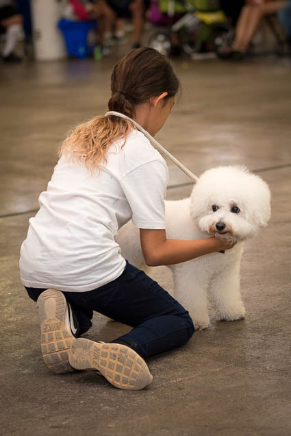 hawaii-pet-expo-2019-honolulu-blaisdell-fokopoint-3335 Hawaii Pet Expo 2019