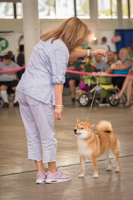 hawaii-pet-expo-2019-honolulu-blaisdell-fokopoint-3380 Hawaii Pet Expo 2019