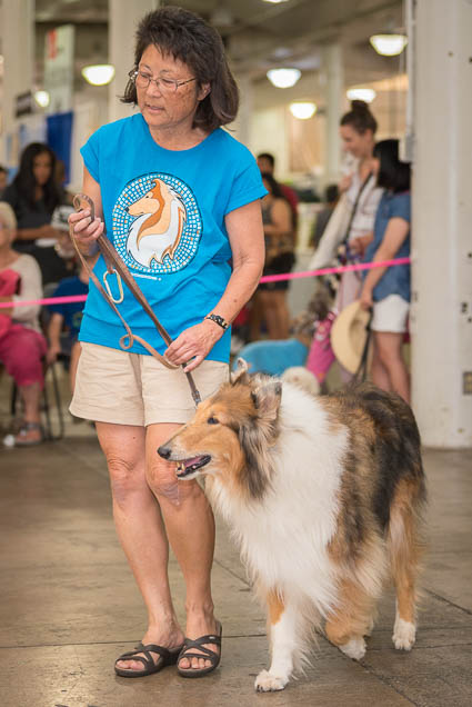 hawaii-pet-expo-2019-honolulu-blaisdell-fokopoint-3421 Hawaii Pet Expo 2019