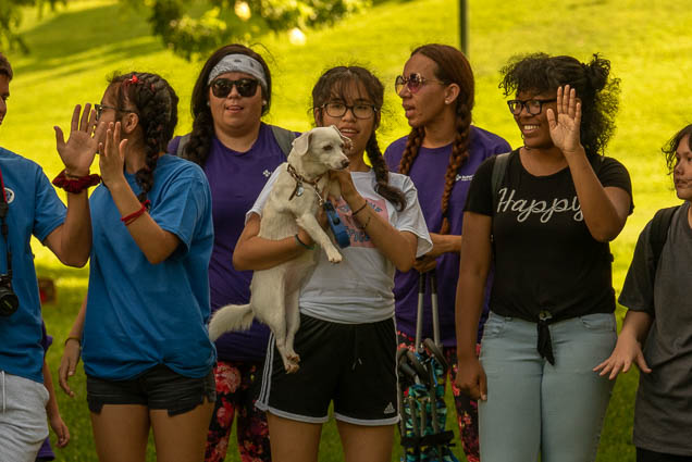 dog-namiwalks-hawaii-honolulu-2019-fokopoint-0956 NamiWalks Oahu at Civic Grounds