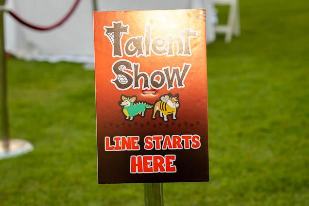 talent-show-petblock-paina-honolulu-2019-fokopoint-1640 PetBlock Paina at Victoria Ward Park